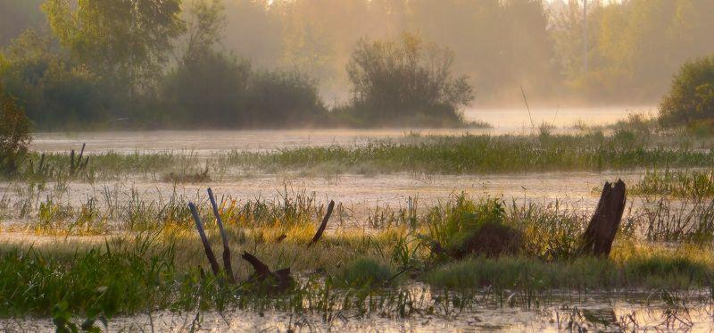 утро туман суходол Суходолphoto preview