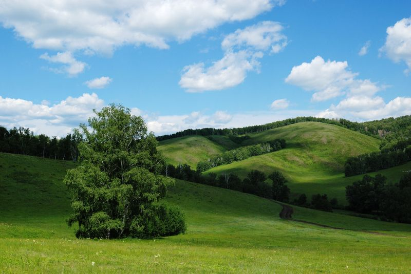 башкирия Зеленая Башкирияphoto preview