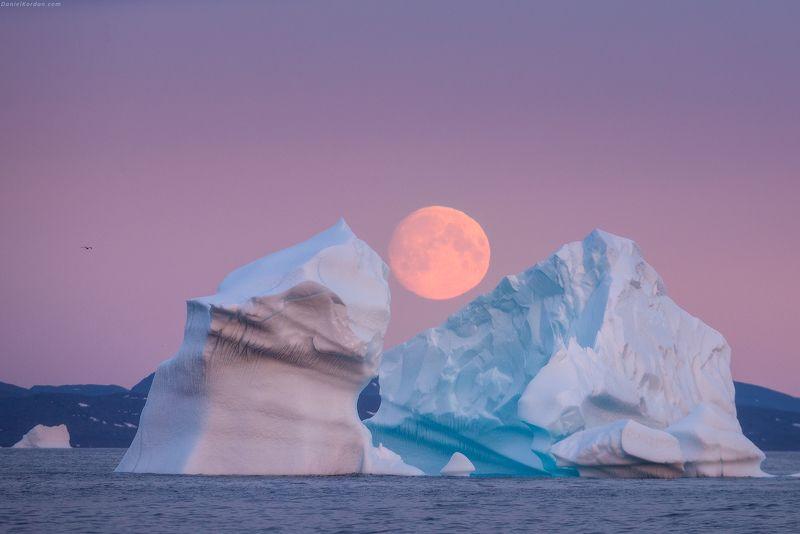 Гренландия Игры с лунойphoto preview