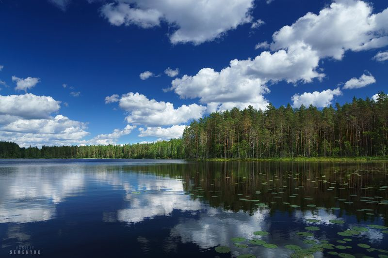 карелия, небо, озёро, облака, сосны, ели, лес, отражения. Карельское лето.photo preview