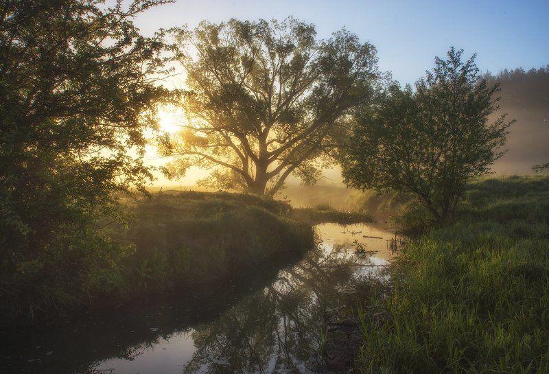 Майское солнечное утро...photo preview