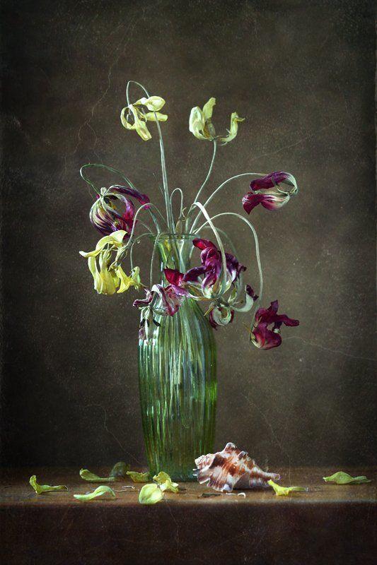 натюрморт, цветы. тюльпаны, увядание И в увядании красота...photo preview