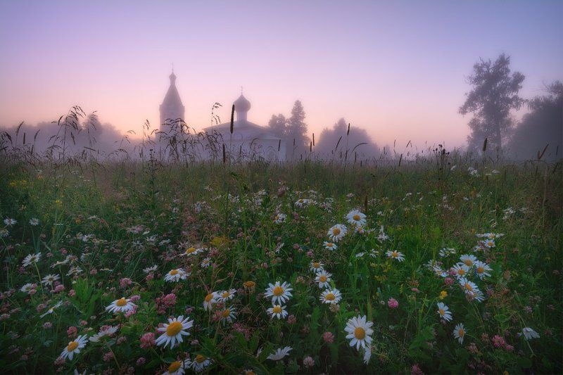 пейзаж, пейзажная съемка, вечер, туман, храм, июль, июльское утро, свежесть, молодая зелень, никон, landscape, may, fog, morning, church Летний вечер...photo preview