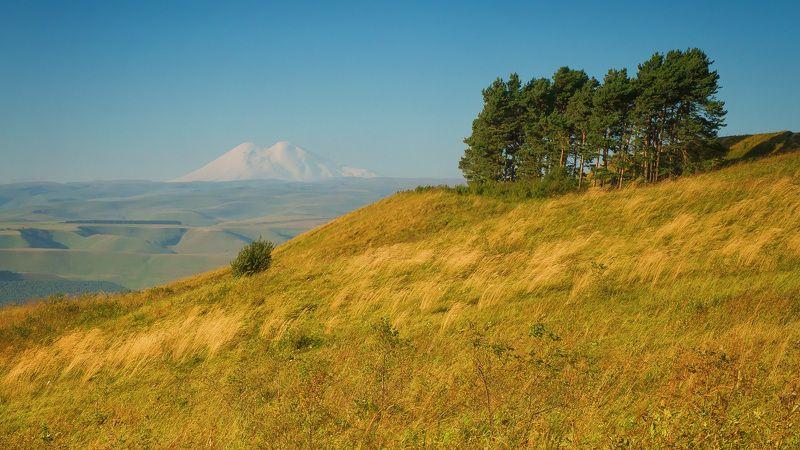 пейзаж, россия, кисловодск, национальный парк, горы, малое седло, эльбрус Вид на Эльбрусphoto preview