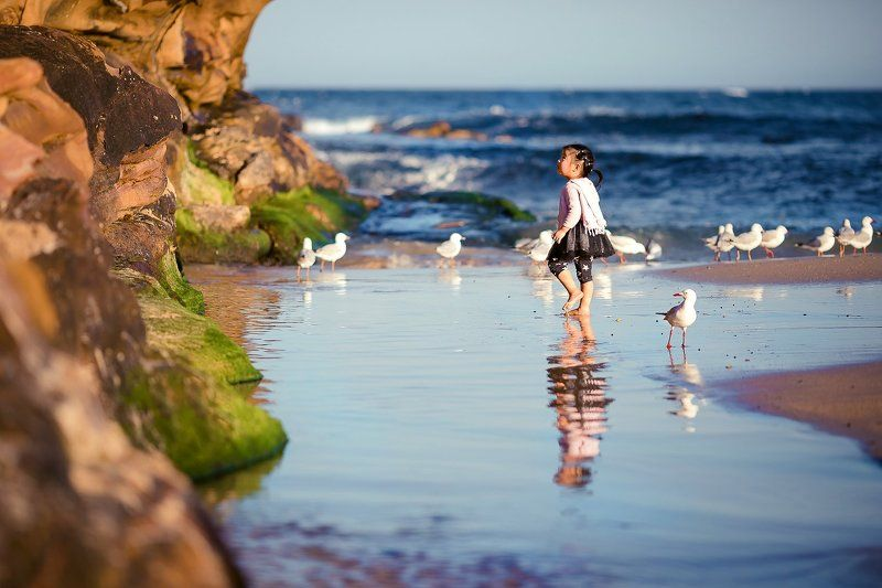 sunny, beach, blue, waves, sea, seaside, cute, seagull, childhood, lifestyle Beachsidephoto preview