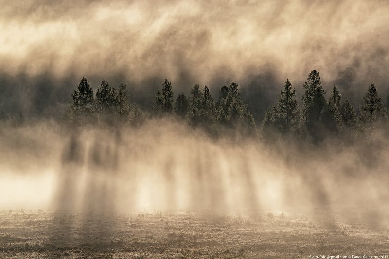 алтай, сибирь, siberia, лето, туман, altai, утро, курай, курайская степь, лучи ЛЕСphoto preview