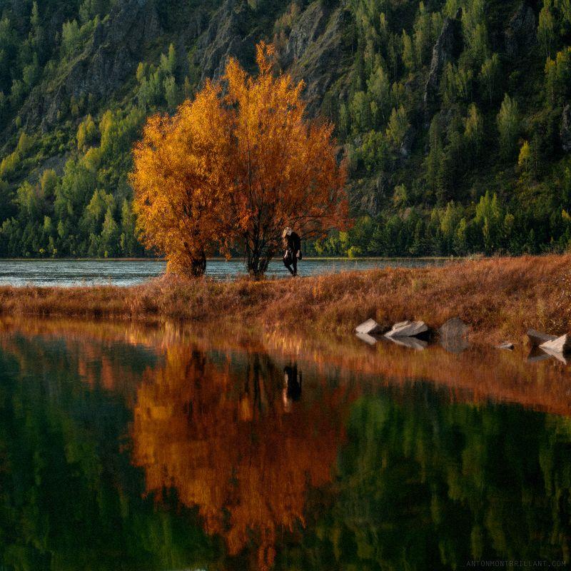...as autumn callsphoto preview