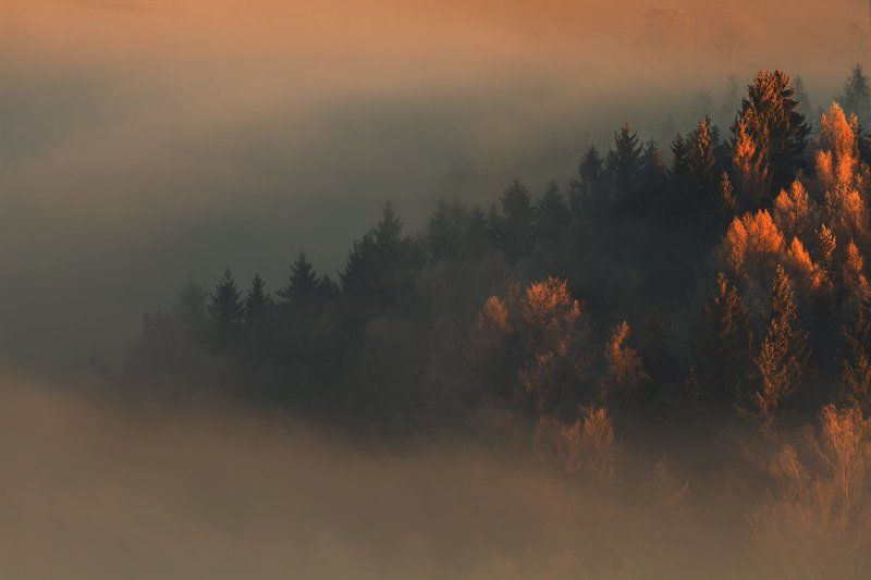 landscape,canon,mist,light,autumn I Saw Old Autumn in the Misty Morn.photo preview