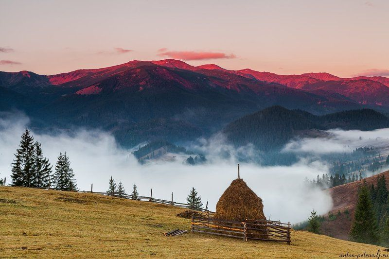 рассвет, туман, карпаты, горы, осень Сенокосphoto preview