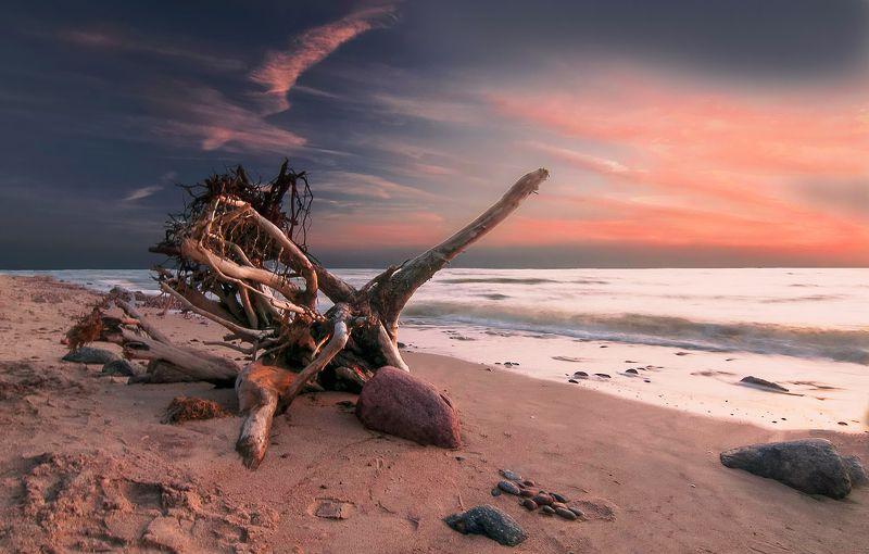 sea,sunset,sky,seascape Evening tunephoto preview