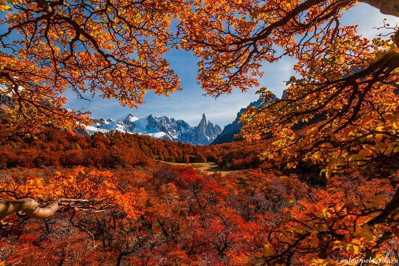 патагония, горы, рассвет, аргентина Серро Торре, лед и пламяphoto preview
