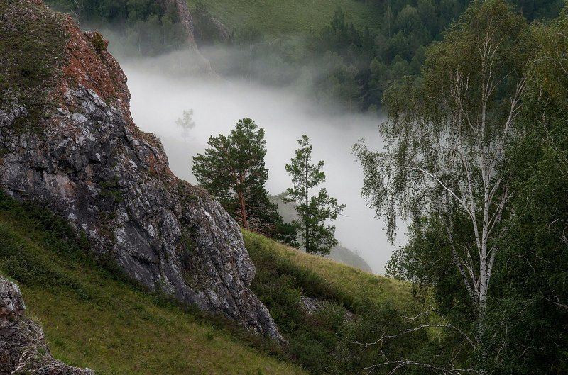 туман. торгашинский хребет. После дождя.photo preview