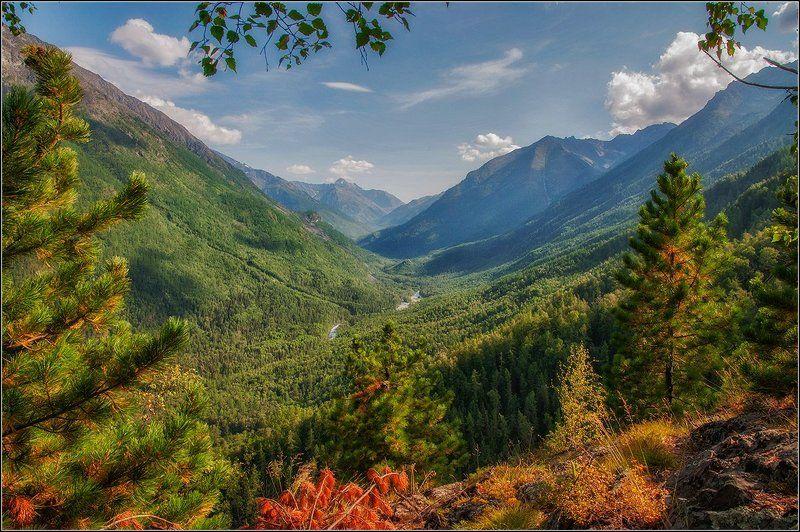 горы, долины, реки, озёра, тайга В горах Алтаяphoto preview