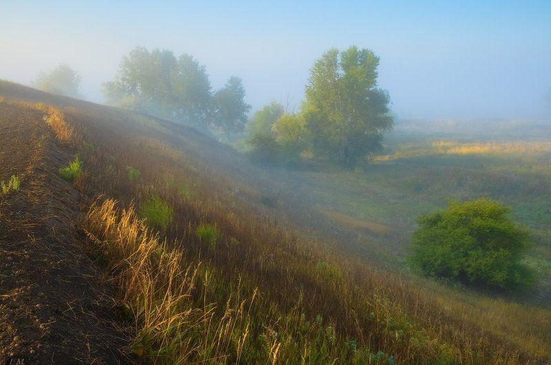 осень, туман, утро, луга, сентябрь, рассвет, свет, morning, fog, autumn, september, sunrise, foggy, misty, sun, grass, fields, солнце, countryside первые туманы ..photo preview