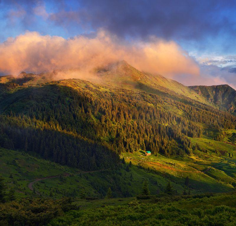 украина, карпаты, горы, мармаросы, поп иван Когда среди твоих соседей только облакаphoto preview