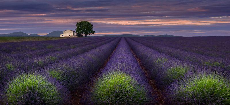 прованс, франция, provence Вечер в Провансеphoto preview