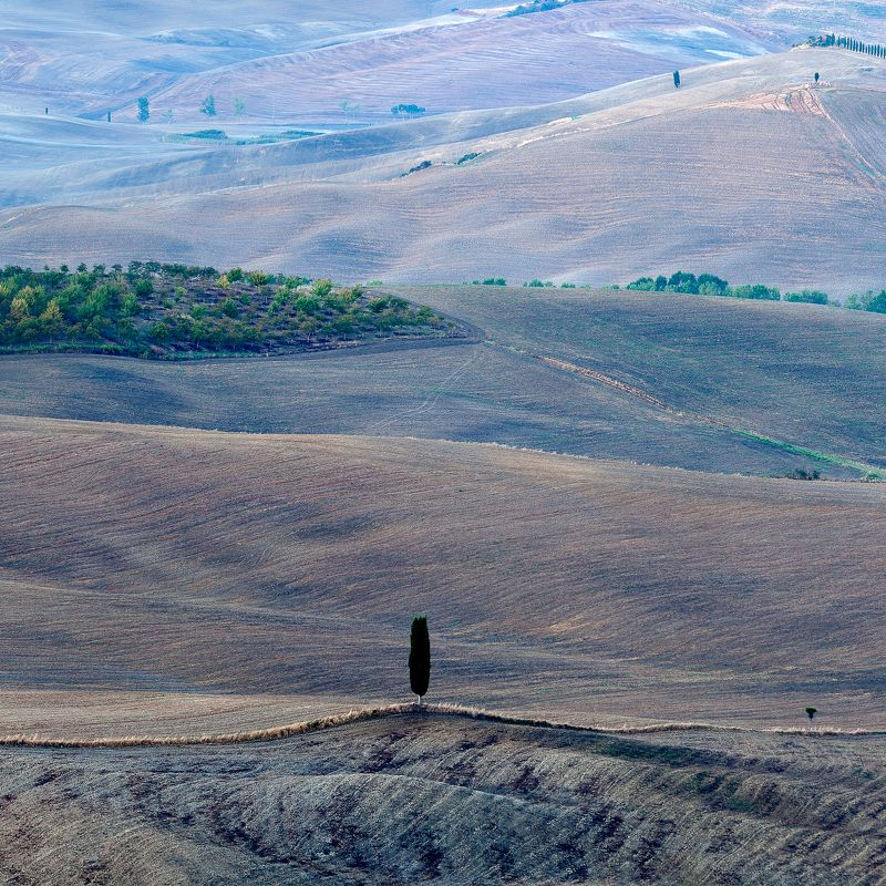 Italy, Tuscany, Pienza, The Onephoto preview