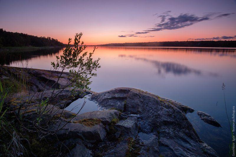 закат,лето,берег,ладога,озеро,россия,пейзаж,север,длинная выдержка,вода,отражения,камни Вечер на Ладогеphoto preview
