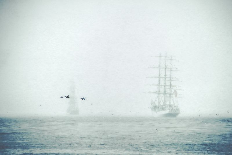 baltic sea, sailing ship, birds, fog The flying Dutchmanphoto preview