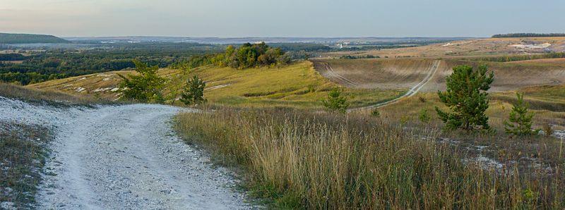 листья, ветки, осень, свет, блик, деревья Наши просторыphoto preview