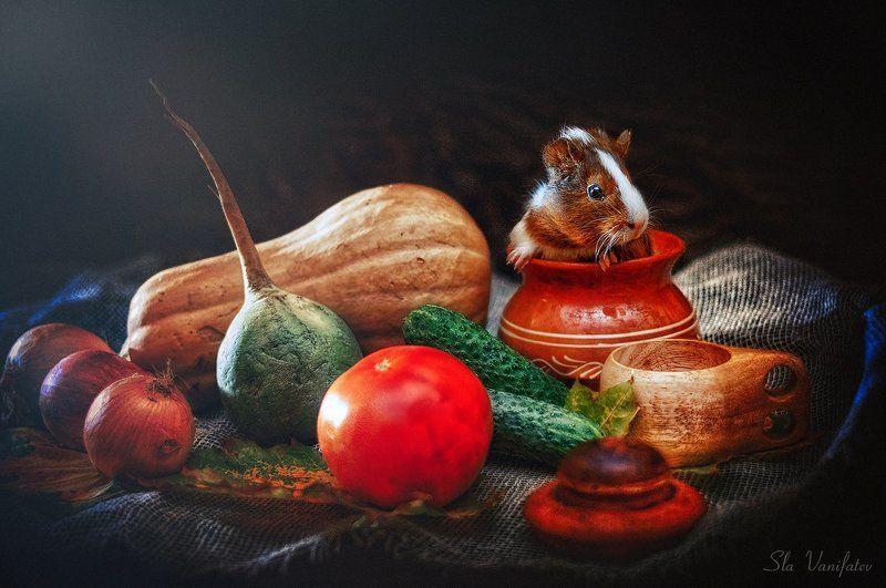 Осенний Натюр...photo preview