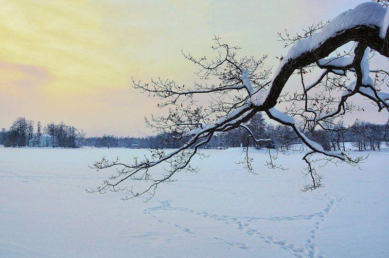 пушкин, зима Треугольникиphoto preview
