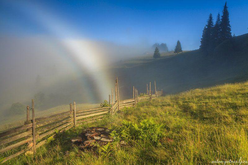 рассвет, туман, карпаты, горы, осень Белая радугаphoto preview