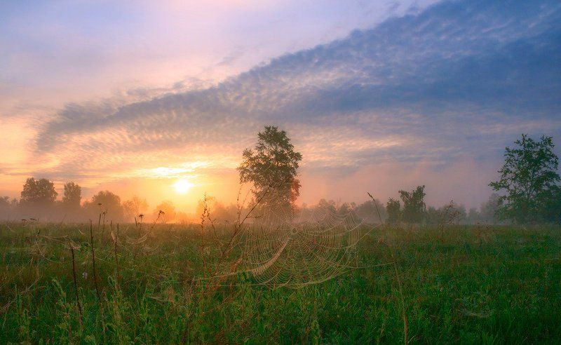 Утро ушедшего летаphoto preview