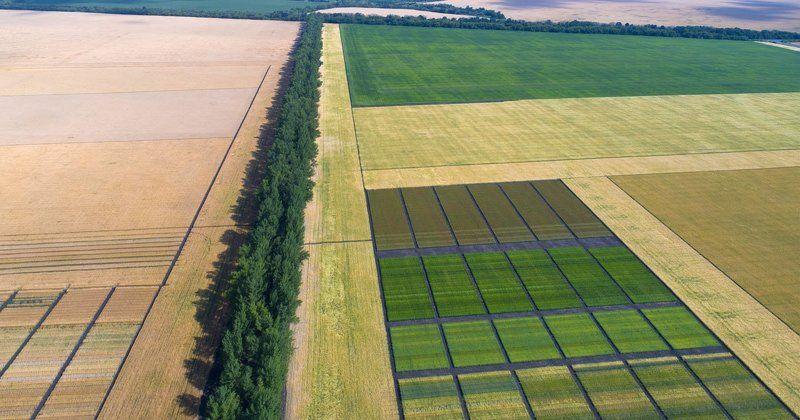Воронежская область, Россия, #lдрон, #air, #aerial, #аэро, #drone Сельская геометрияphoto preview