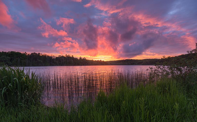 sunset, clouds, lake, forest, reed,закат, облака, озеро, лес, тростник Ring of firephoto preview