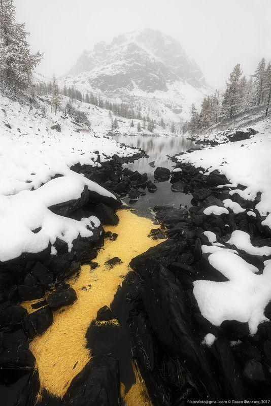 алтай, сибирь, siberia, fall, куэктанарские озера, altai, снег, осень, иголки Утекающая золотая осеньphoto preview