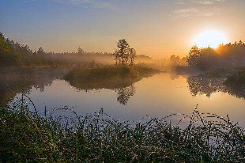 осень рассвет река туман утро желтый отражение солнце тишина осеннего рассвета..)photo preview
