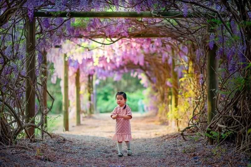 purplevine...photo preview