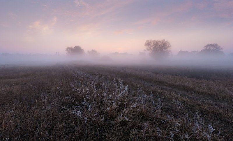 утро, рассвет, туман, луга, осень, весна, времена года, foggy, morning, landscape, countryside, sunrise, spring, autumn Туманные рассветы. От весны до осени.photo preview