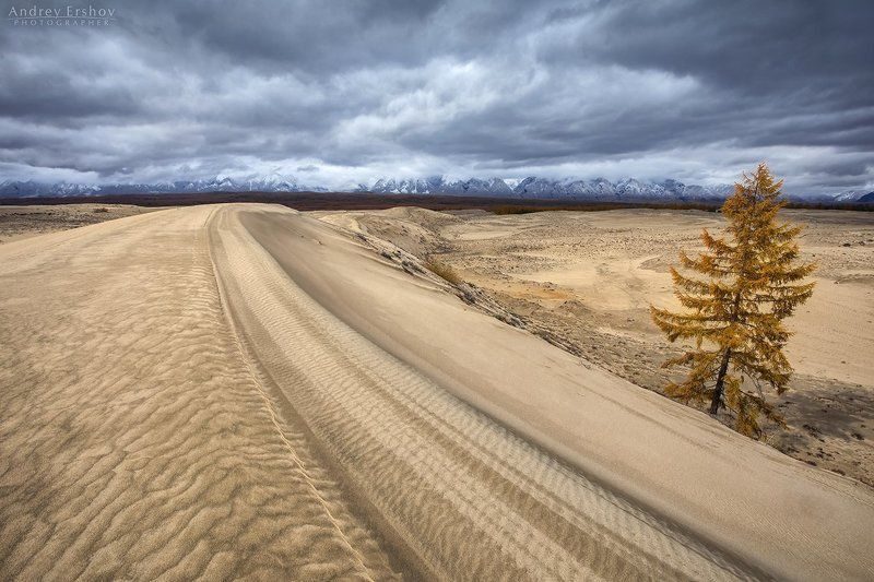 В чарских пескахphoto preview