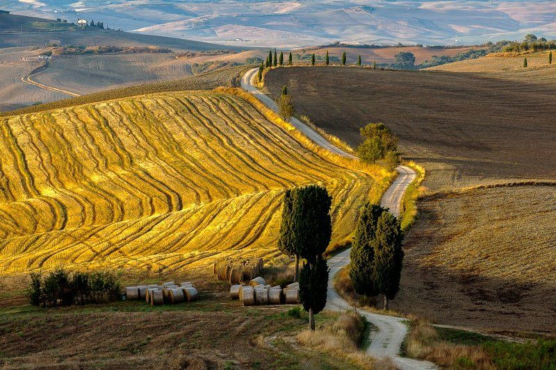 italy, tuscany, Road to homephoto preview