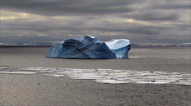 антарктика, путешествие, океан, айсберг, лед, большой, синий, природа, landscape, nature Дальние моряphoto preview