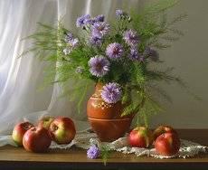 ... Бабье лето... Цветут сентябринки...