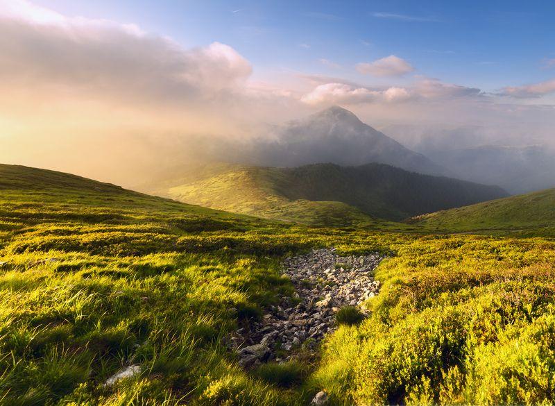 карпаты, мармарошский хребет, гора петрос ***photo preview
