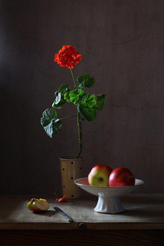 натюрморт, цветы, герань, фрукты, яблоки С цветком красной герани и двумя яблокамиphoto preview