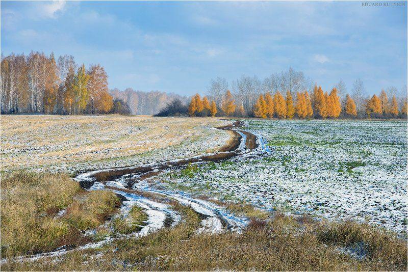 зауралье, урал, первыйснег, золотаяосень, осень, золотая. каргаполье, снег, курганская Первый снегphoto preview