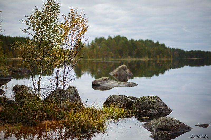 пейзаж, карелия, осень Карельский этюдphoto preview