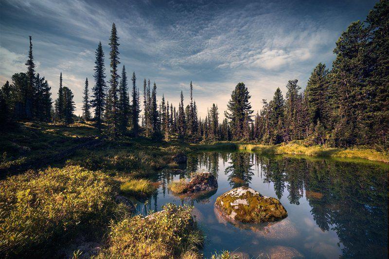 пейзаж, природа, тайга, лес, глухая, красивая, озеро, камни, холодное, чистое, прозрачное, утро, мох, сибирь, ергаки, красноярский край, хребет, горы, природа, парк, утро Таежное озерцоphoto preview