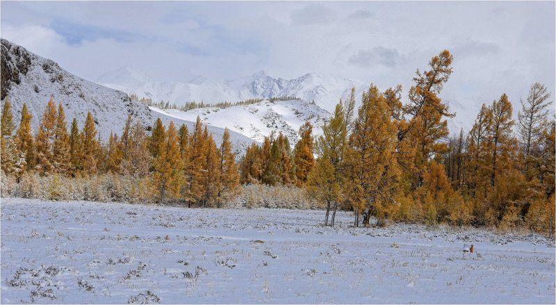 В горы пришла зимаphoto preview