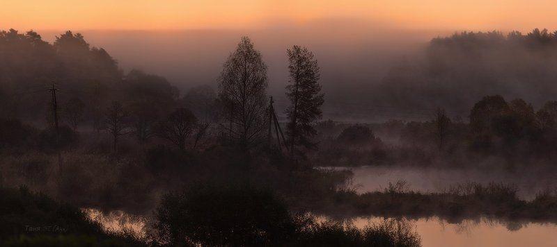 питер, болото, утро, рассвет, туман, ленобласть На исходе сентября...photo preview
