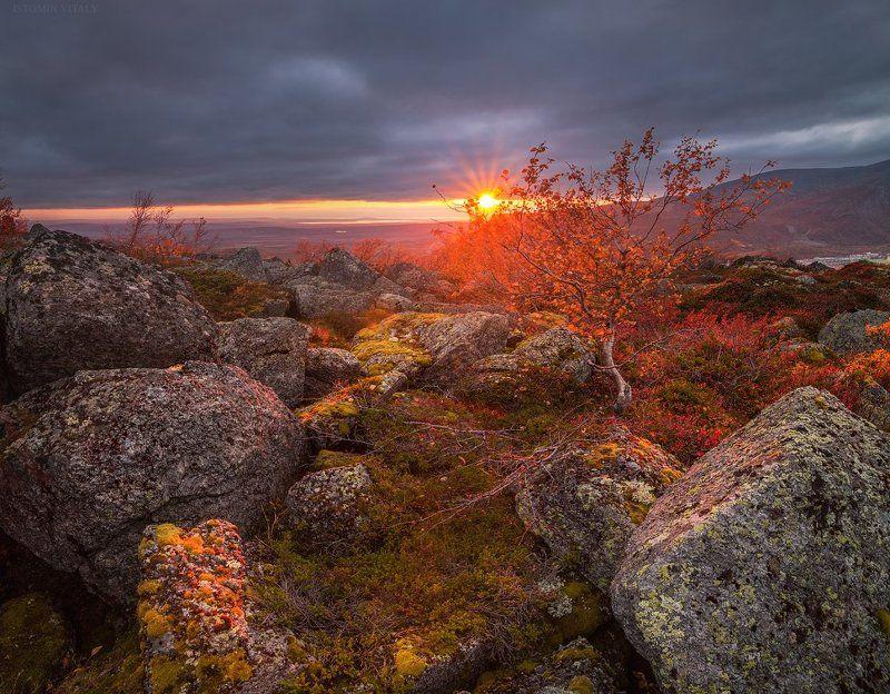 пейзаж,панорама,хибины,россия,небо,дерево,свет,цвет,луч,горы,мурманская область,кольский север,осень осеннее солнышкоphoto preview