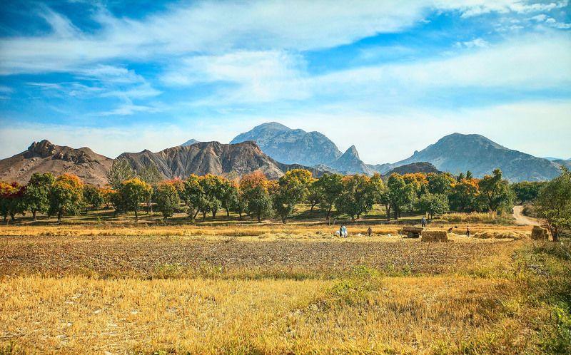 Исфаринская осень… Таджикистанphoto preview