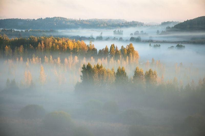 пейзаж, псков Туманы...photo preview