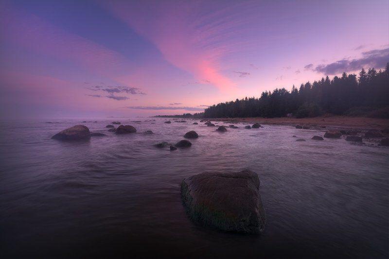 рассвет, утро, туман, пейзаж, рыбинское водохранилище, пейзажная съемка, фототуризм, фототурывыходногодня Сиреневое утроphoto preview
