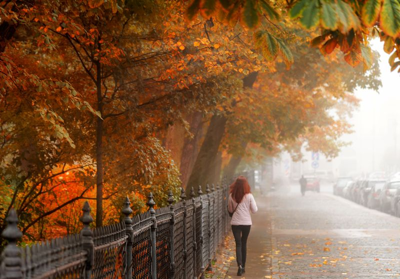 Санкт-Петербург. Октябрь...photo preview